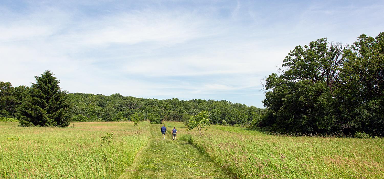 Two people walking along a wide path in an open field.