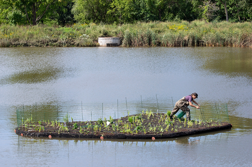 Installation of floating islands, Hartung Park, Milwaukee/Wauwatosa