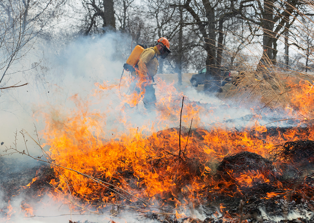 Controlled burn at Washington Park, Milwaukee, Milwaukee County Parks