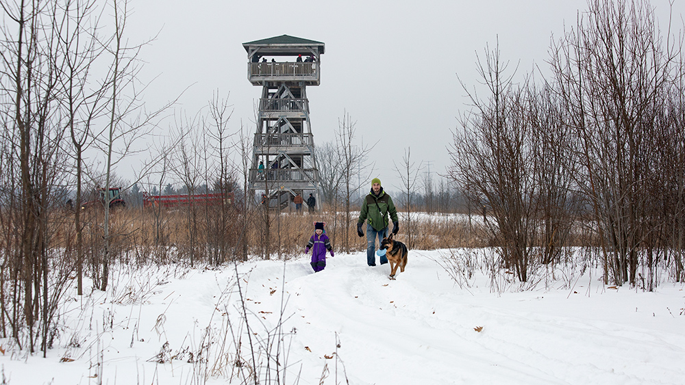 The observation tower and hikers