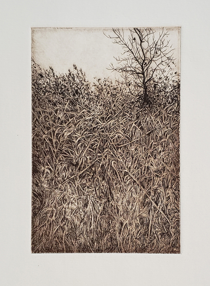 Fellenz Hill 2018. Etching.