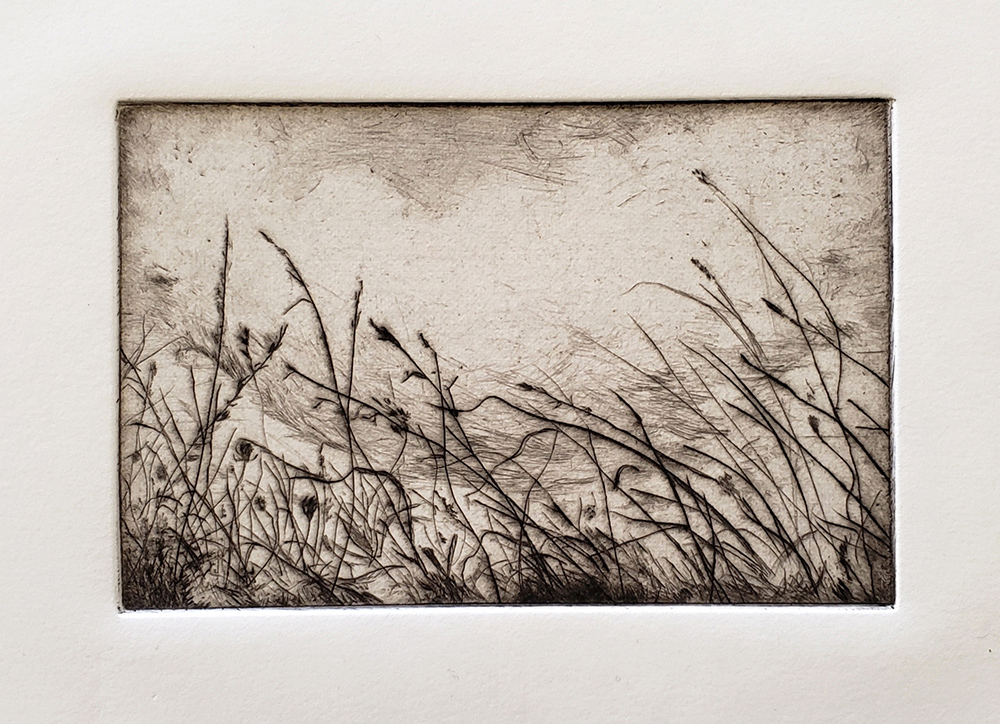Fellenz Grasses with Cloud. Drypoint.