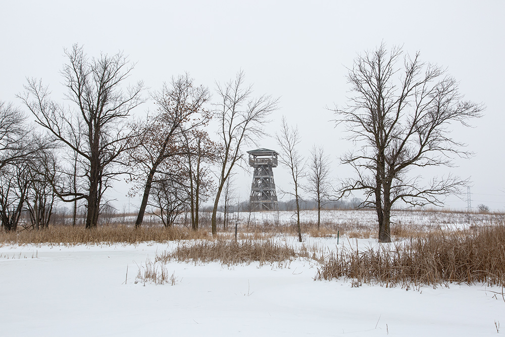 Tower from frozen wetland pond