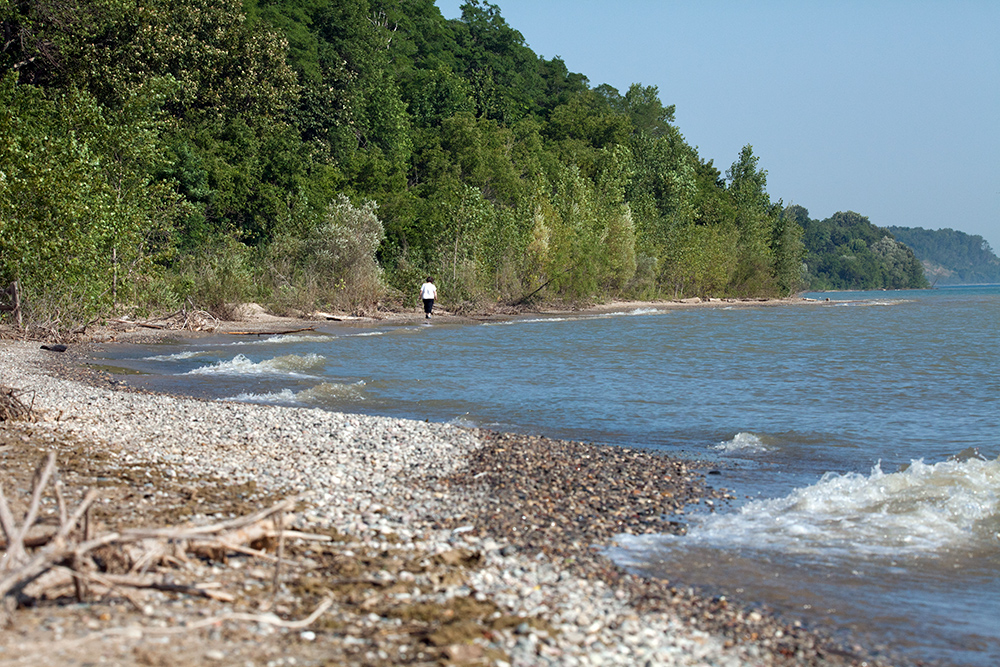 Lake Michigan bluffs at Doctors Park, Fox Point