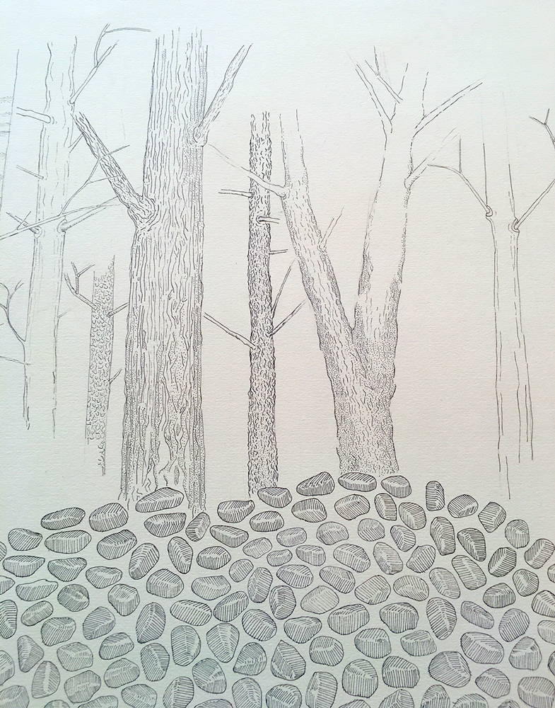 Pen and ink drawing (detail) in progess, of trees and rocks