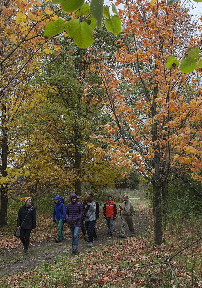 DNR guided birding hike in autumn