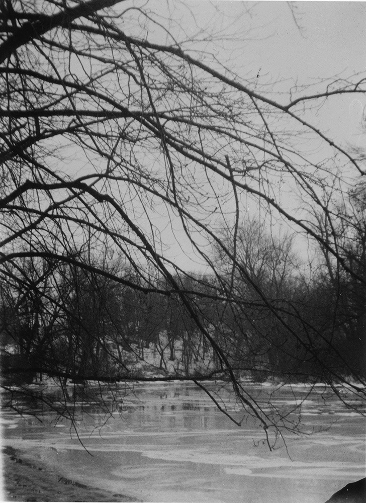 Untitled Brownie camera image of branches over the river
