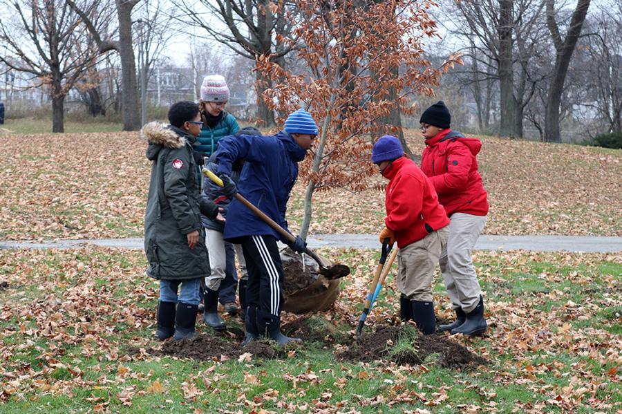 Tree planting in Washington Park. Photo by Jajuan Lyons