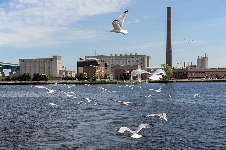 MMSD's Jones Island Wastewater Treatment Plant.