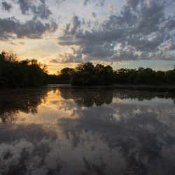 sunset over the Washington Park lagoon