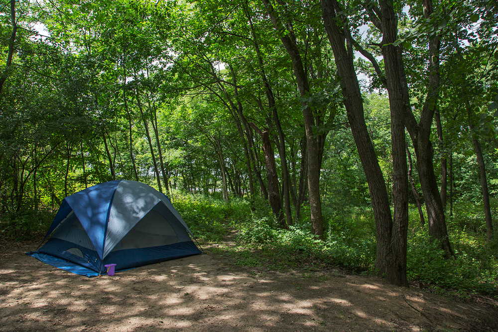 a blue tent on a dirt campsite in the shade of the surrounding woods
