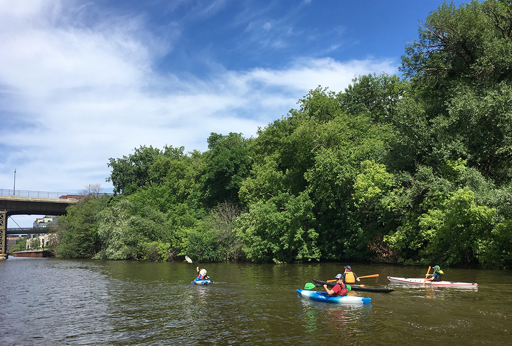 four kayaks paddling upstream along a wooded shoreline towards a distant bridge on the Milwaukee River.