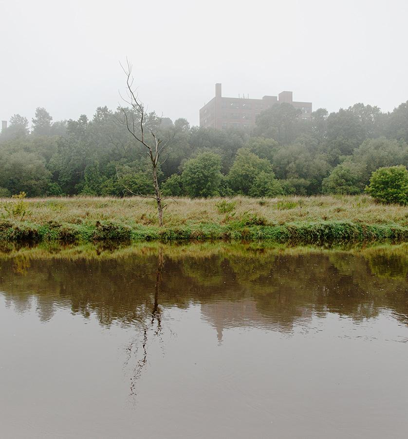 foggy morning on Milwaukee River