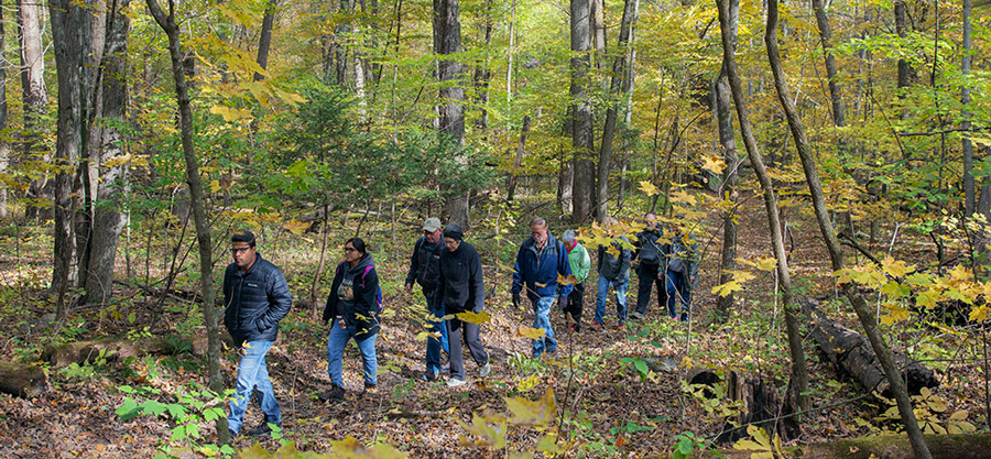 a group of hikers in autumn woods