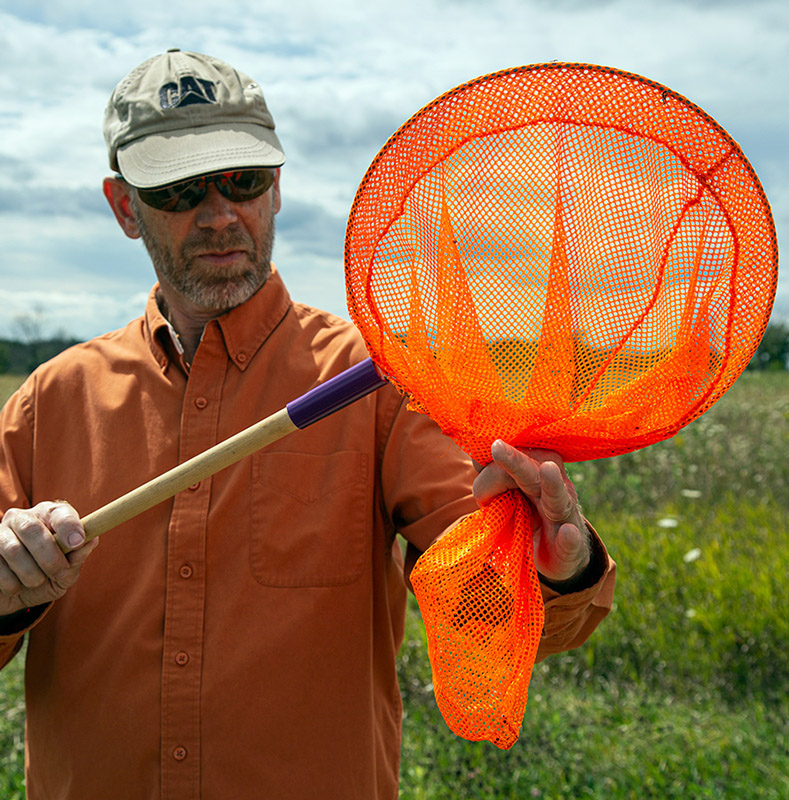 a man holding up an orange net with a monarch butterfly inside it