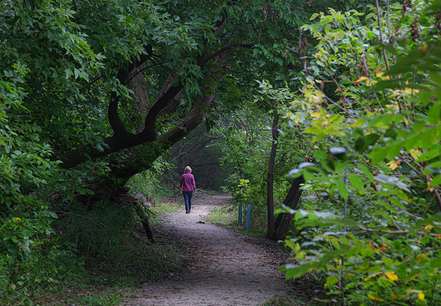 woman walking on woodland trail