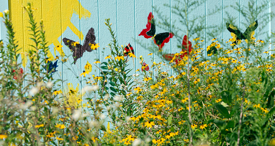 Painted scene of sun and butterflies behind wildflowers
