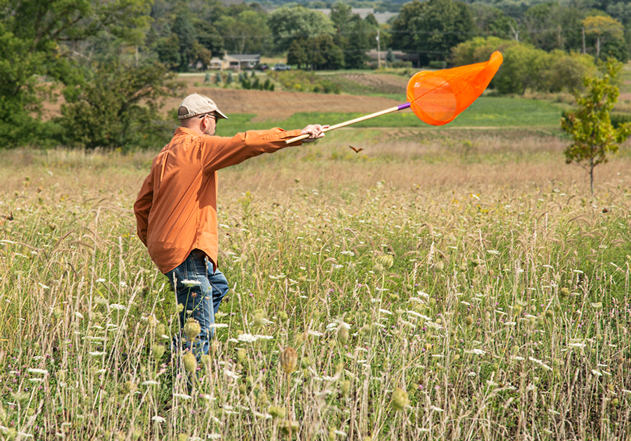 a man using a bright orange net to catch a butterfly