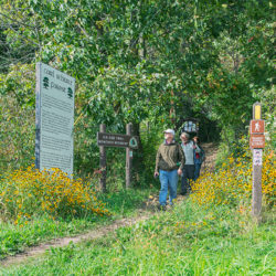 Three hikers emerge from the woods at the trail head to the Monches Segment of the Ice Age Trail