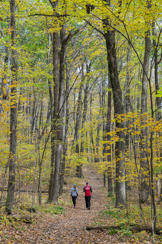 two hikers on the Ice Age Trail amid autumn foliage