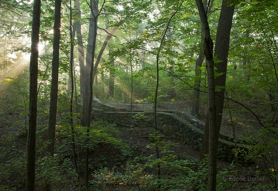 The ravine with ruined staircase at sunrise in summer