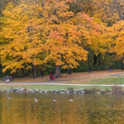 lagoon in autumn