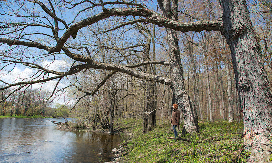 Artist in residence Gina Litherland at Bratt Woods Preserve on the Milwaukee River in Grafton