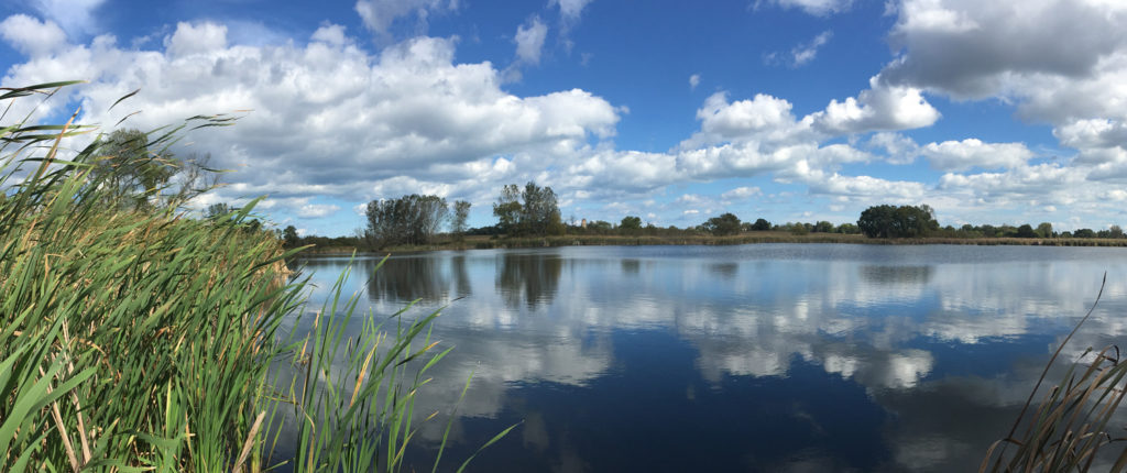 Panoramic view of lake and wetland at Nicholson Wildlife Refuge
