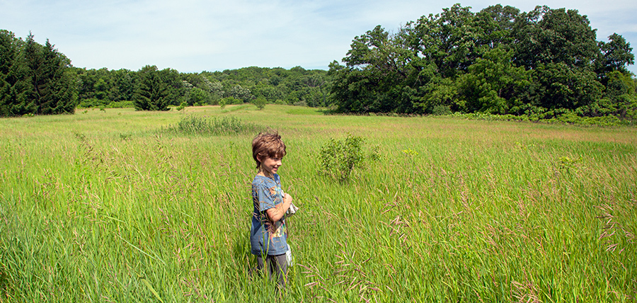 Boy walking in field