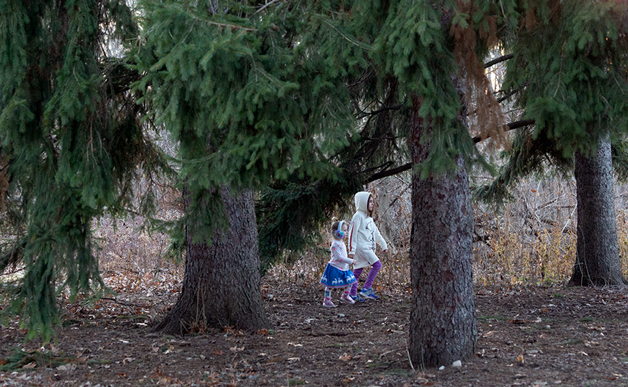 two young girls striding through a pine grove