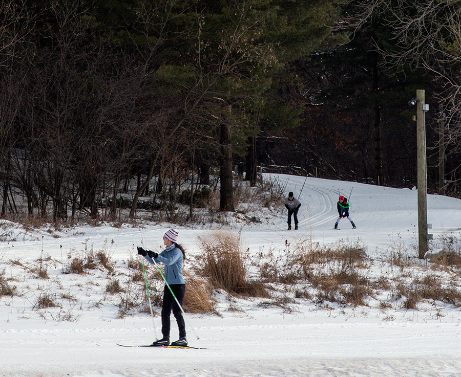 Three cross country skiers on two intersecting wooded trails.