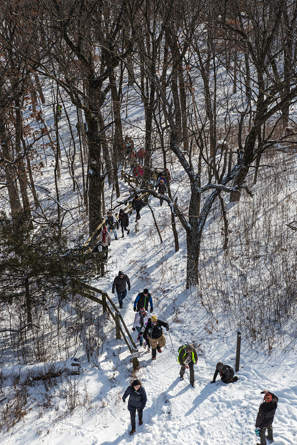 An aerial view of a group of hikers walking through a forest.