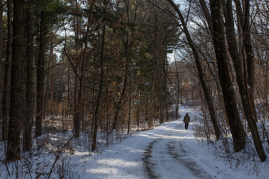A solitary hiker on the paved, accessible hiking trail.