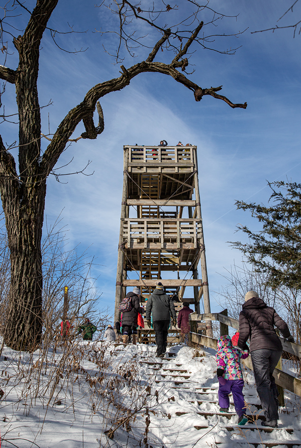 The view of the lookout tower from the trail.