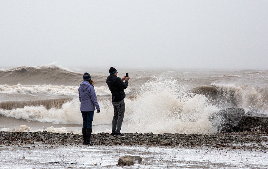 two people with cell phone and surf