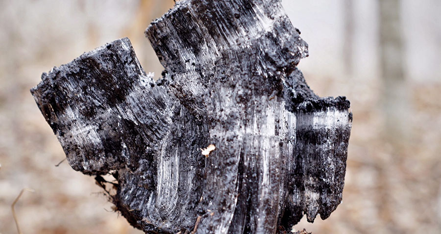 a block of frozen soil