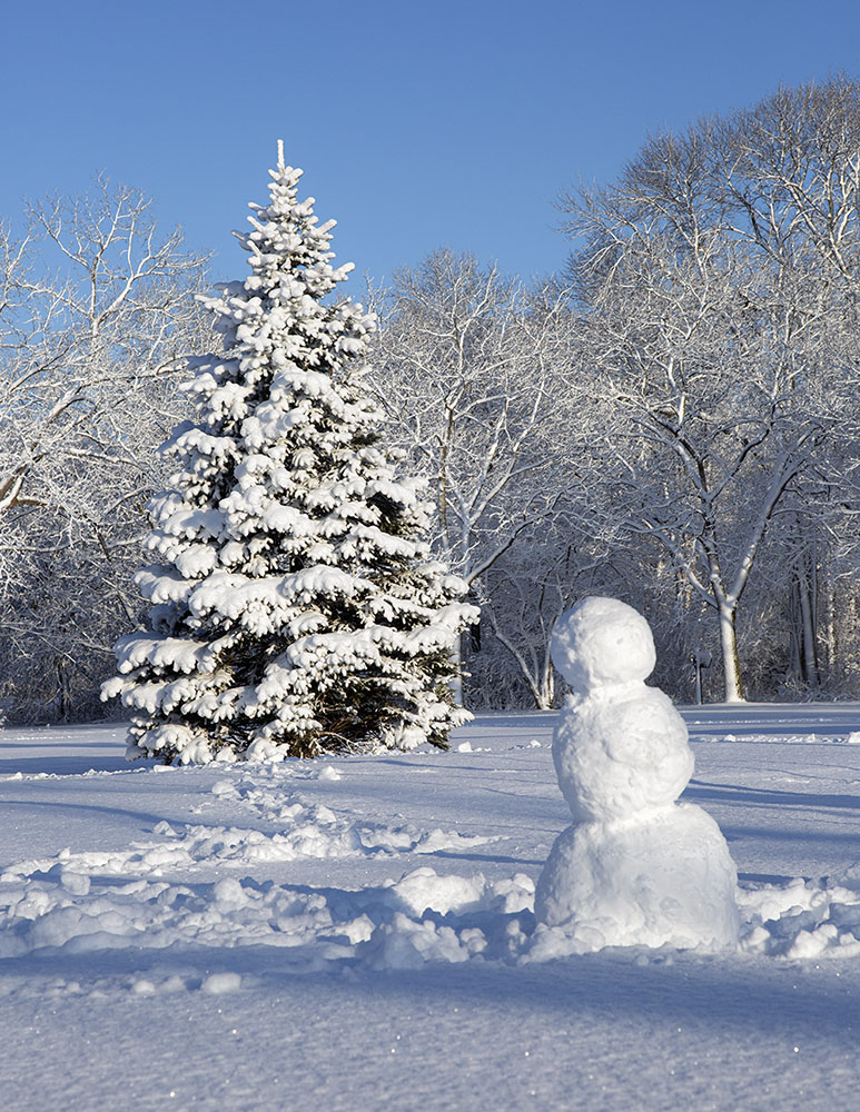 Snowman, Estabrook Park