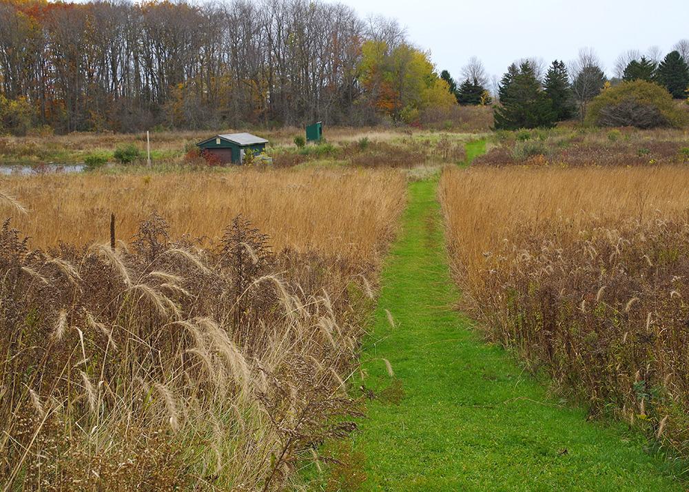 Prairie path.
