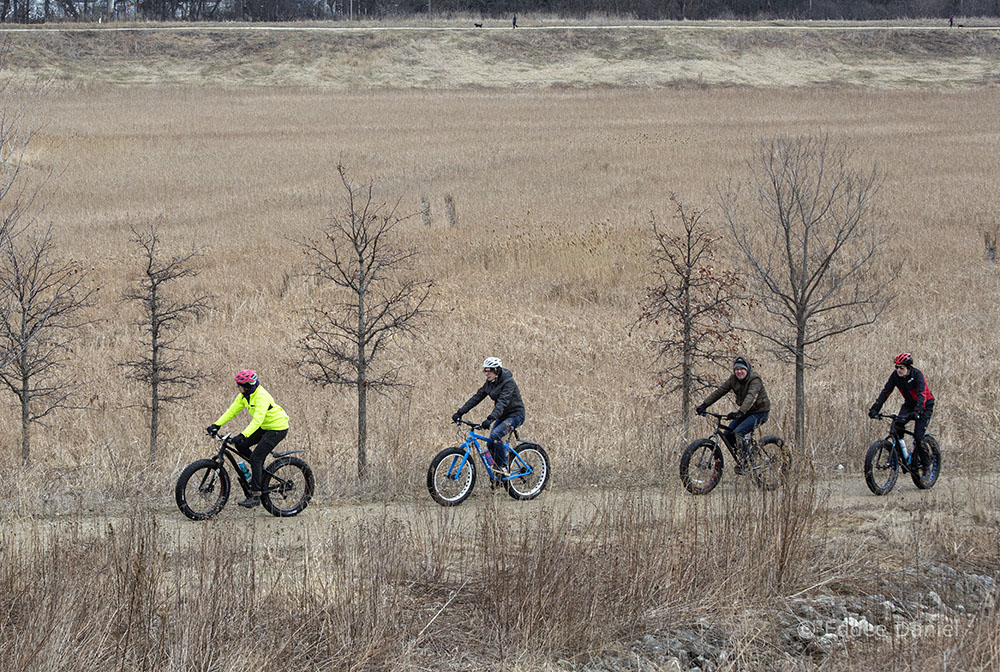 Four cyclists on the basin trail at Milwaukee County Grounds