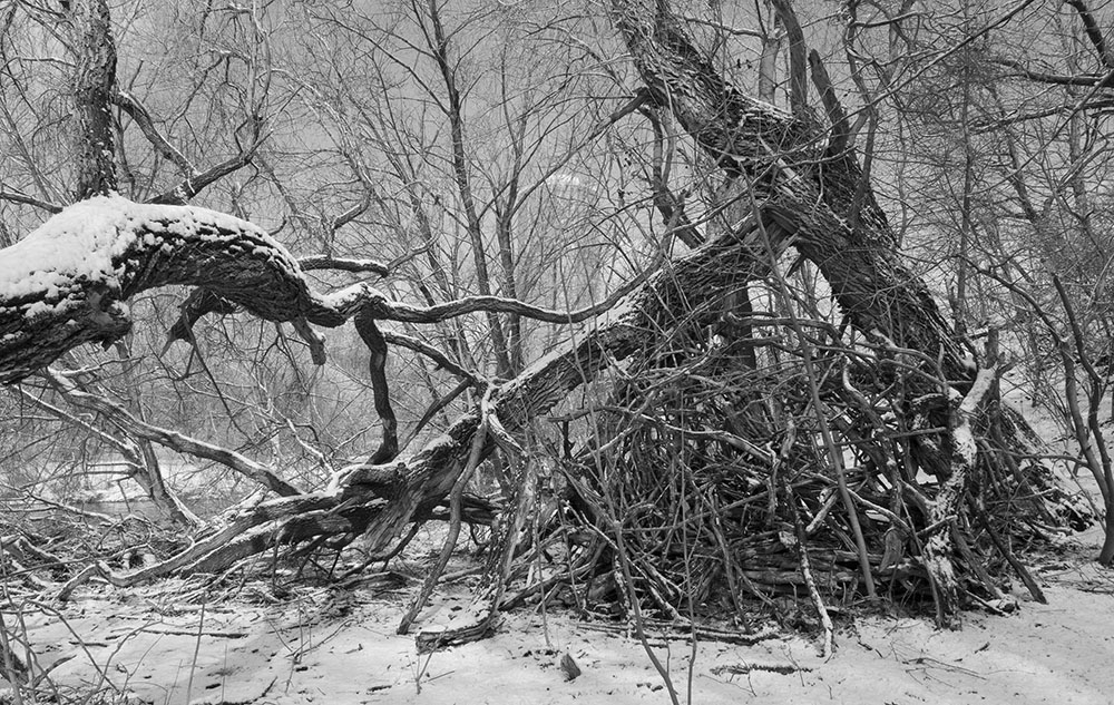 A stick fort in Riverside Park, Milwaukee