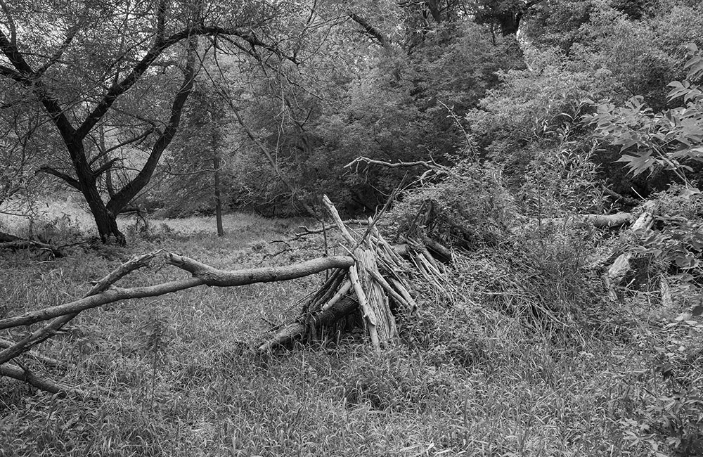 A stick fort in Gordon Park, Milwaukee