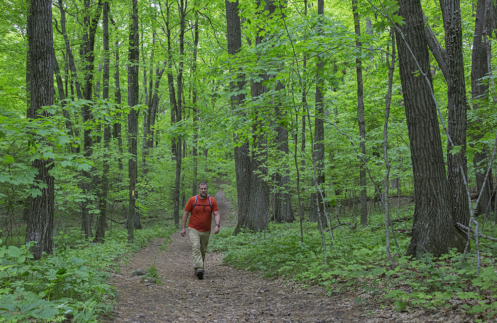 A man hiking in a woodland section of the Ice Age National Scenic Trail