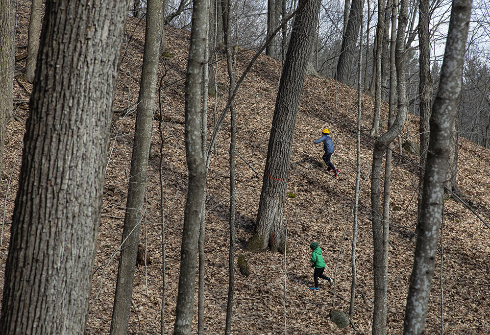 Two boys running up a wooded hill at Holy Hill