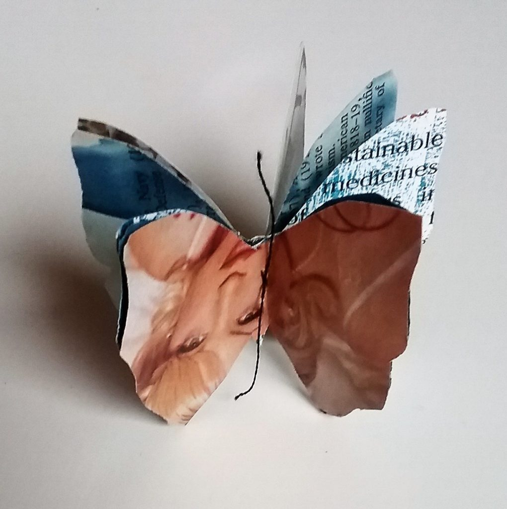 """Heather K,"" handmade butterfly book"