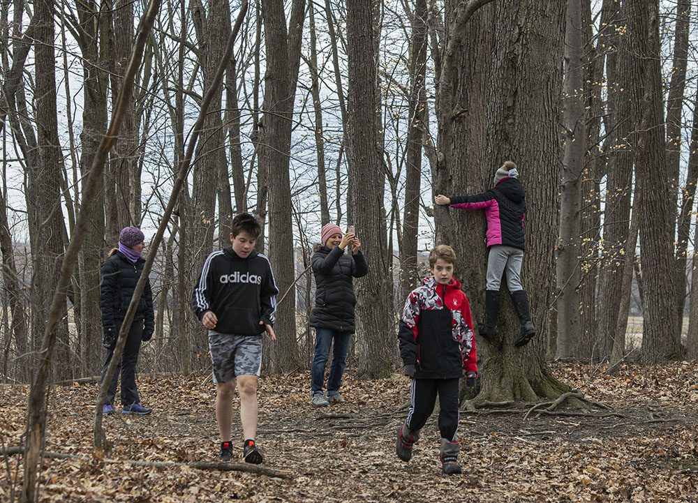 A family of tree-huggers at Mequon Nature Preserve in Mequon.