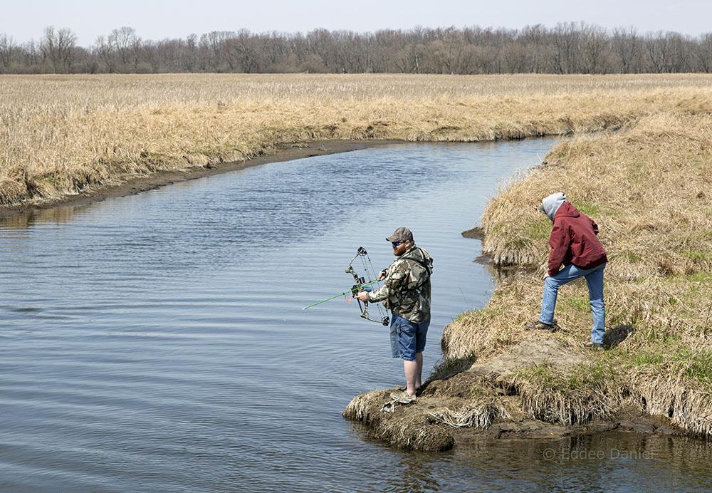 Bow fishing for carp. Theresa Marsh Wildlife Area, Theresa, WI.