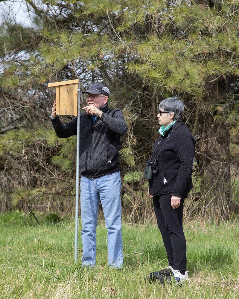 The new Bluebird nesting box.