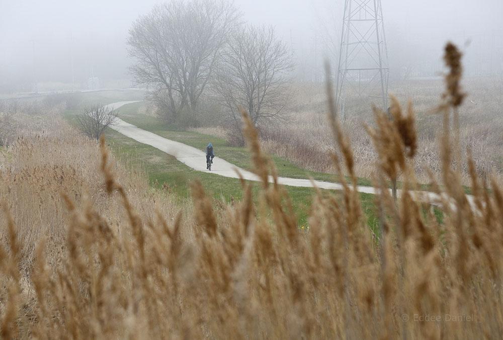 A foggy morning on the Oak Leaf Trail, Oak Creek.