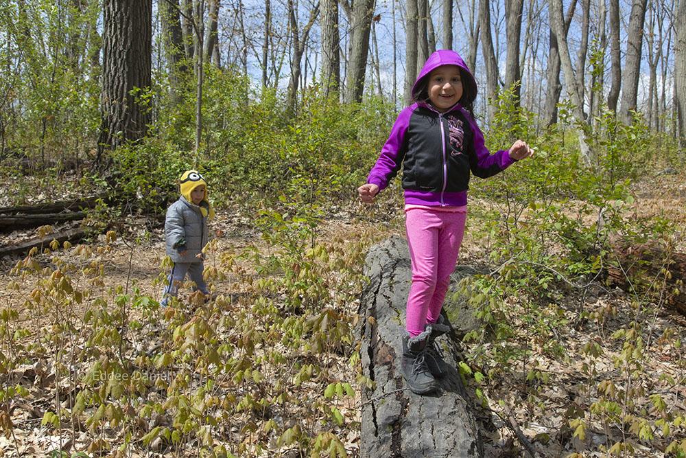 Walking on a log, Mound Zion Park, Brookfield