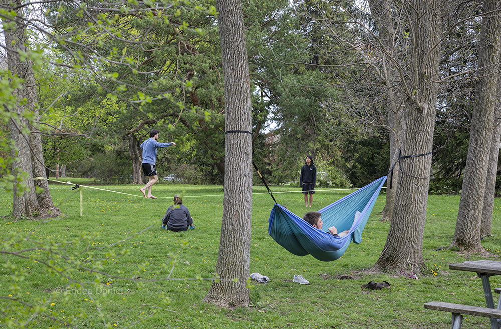 Hammocking and walking the slack line in Hoyt Park, Wauwatosa